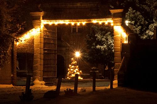 Ein verschneiter Tannenbaum im Innenhof des Nikolausklosters